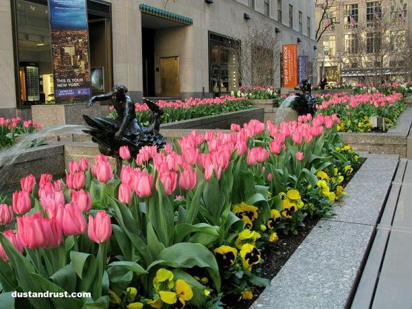 Channel Garden Fountain Flowers