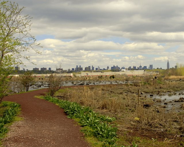 Mill Creek Marsh NYC Skyline