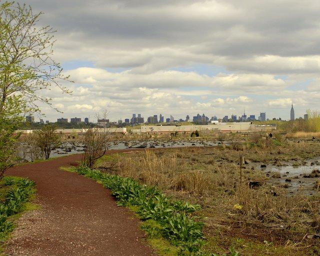 Mill Creek Marsh NYC Skyline